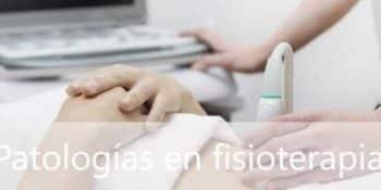 Listado de patologías en fisioterapia - Innovación y tecnología