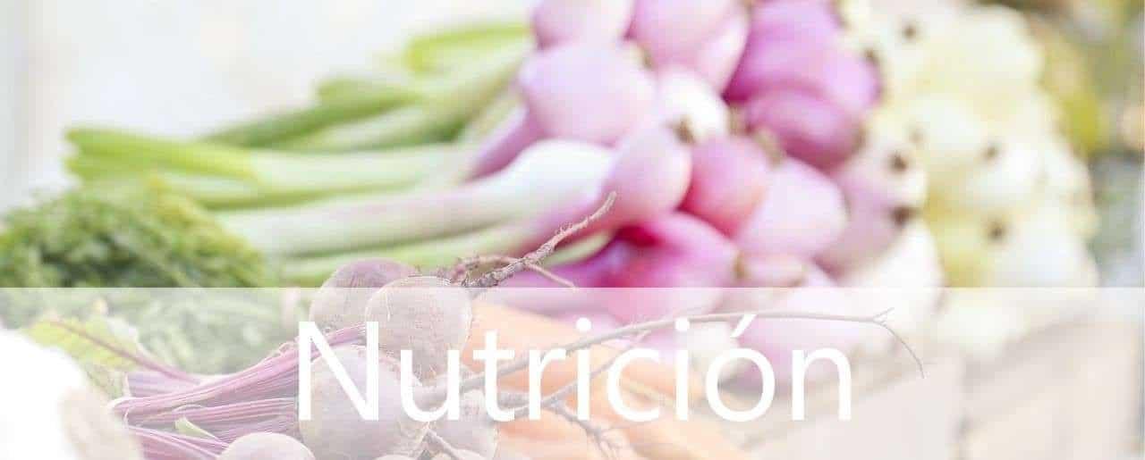 Dietista nutricionista en MAdrid. Dietas con éxito asegurado - Clínicas H3